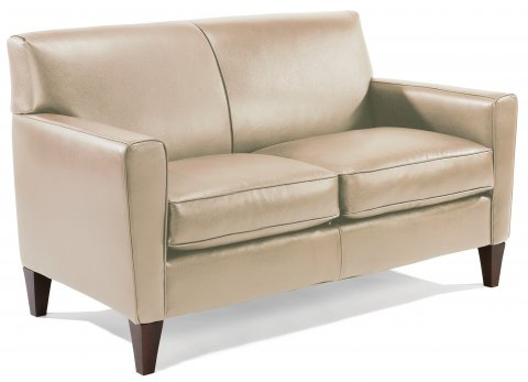 Mathis Leather Loveseat C3966-20