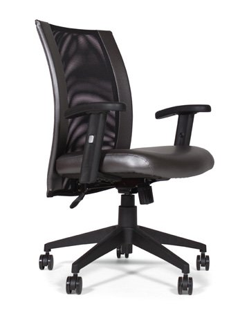Addax Task Chair CA864-10