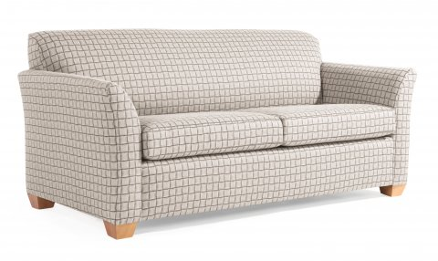 Proponent Three-Quarter Sleeper Sofa C2570-42