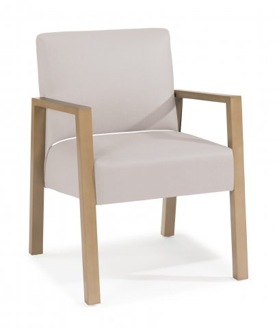 Argus Low-back Chair HC004-10