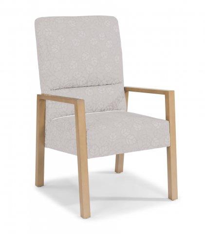 Argus SpringFlex Chair HC004-12