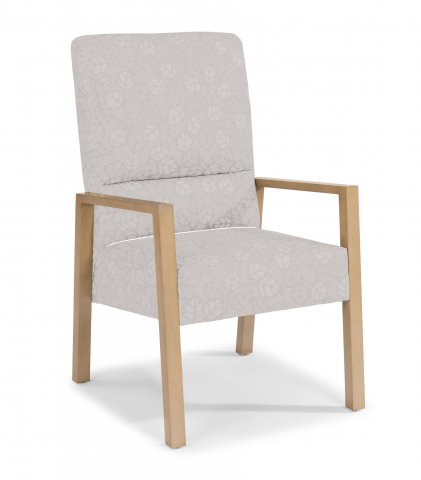 Argus SpringFlex Chair HC004-12