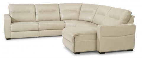 Monet Leather Power Reclining Sectional with Power Headrests 1891-SECTPH in 822-11